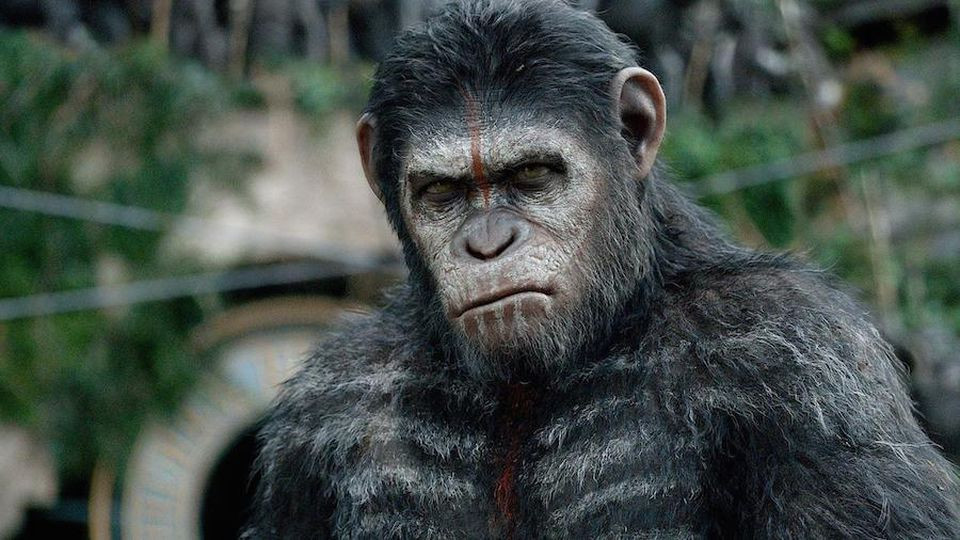 Science fictionfilm Dawn of the Planet of the Apes vrijdag op SBS 9 (trailer)